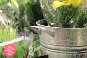 Galvanised buckets feature on the stepped flower and plant display